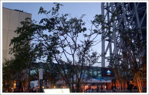 Sky-arena